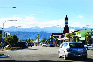 Delivery from Horowhenua District – New Zealand to Vietnam cheapest and fastest