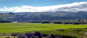 Delivery from Manawatu District – New Zealand to Vietnam cheapest and fastest