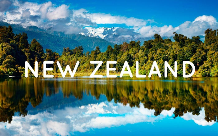 Delivery from Whakatane District – New Zealand to Vietnam cheapest and fastest