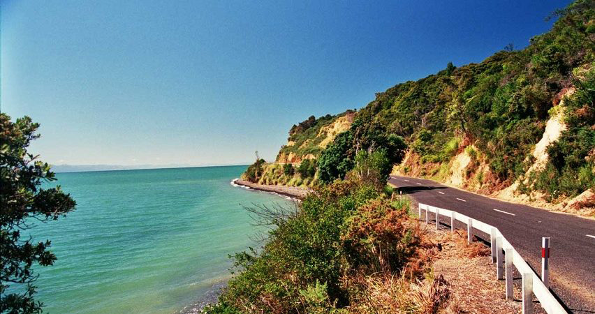 Delivery from Thames-Coromandel District – New Zealand to Vietnam cheapest and fastest